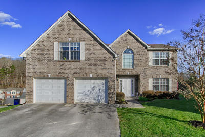 Knoxville Single Family Home For Sale: 7400 Misty View Lane