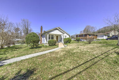 Rocky Top Single Family Home For Sale: 217 Old Clear Branch Lane