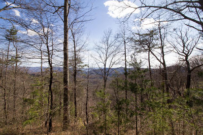 Sevierville Residential Lots & Land For Sale: Harmony Hill Lane Lot 155e