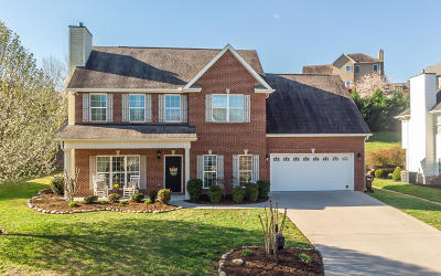 Knoxville Single Family Home For Sale: 2610 Jessica Taylor Drive