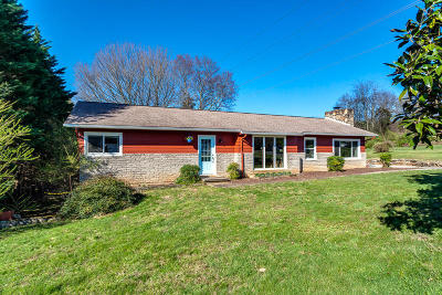 Knoxville Single Family Home For Sale: 521 Mountain Pass Lane
