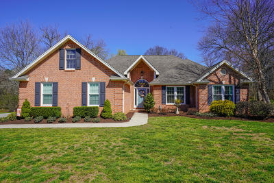 Knoxville Single Family Home For Sale: 5908 Braelinn Drive