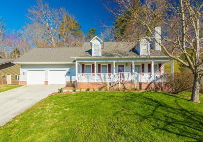 Knoxville Single Family Home For Sale: 6855 Lindal Rd