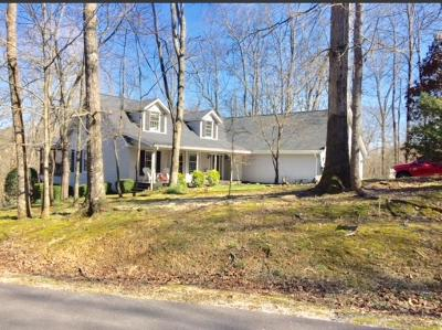 Loudon County Single Family Home For Sale: 231 Gadusi Way