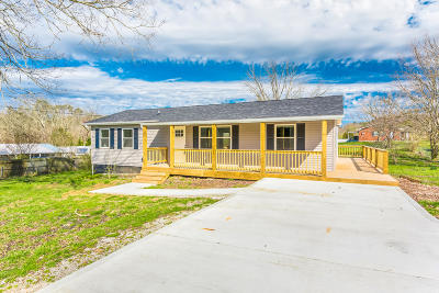 Knoxville Single Family Home For Sale: 7509 N Ruggles Ferry Pike