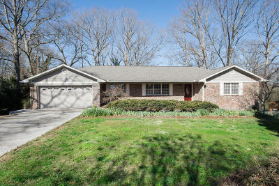 Knoxville Single Family Home For Sale: 353 Russfield Drive