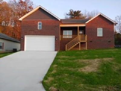 Anderson County Single Family Home For Sale: 187 Cornerstone Circle