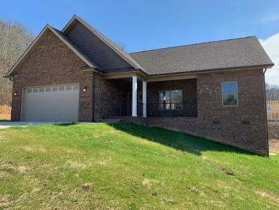 Anderson County Single Family Home For Sale: 422 Brookstone Ridge Drive