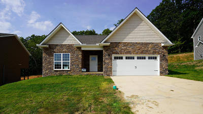 Knoxville Single Family Home For Sale: 3146 Oakwood Hills Lane