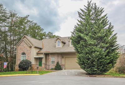 Blount County Condo/Townhouse For Sale: 1002 Silver Creek Lane