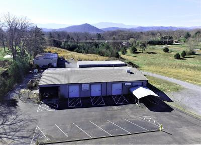 Sevier County Commercial For Sale: 2457 Old Newport Hwy