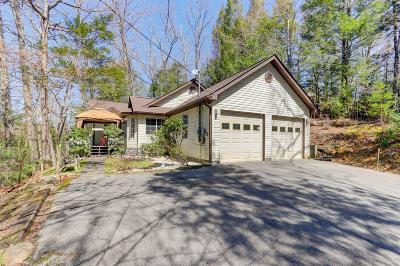 Gatlinburg Single Family Home For Sale: 688 Ownby Drive