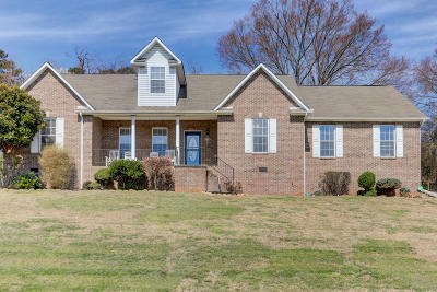 Knoxville Single Family Home For Sale: 7907 Scenic View Drive