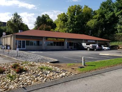 Blount County Commercial For Sale: 622 Condry Lane