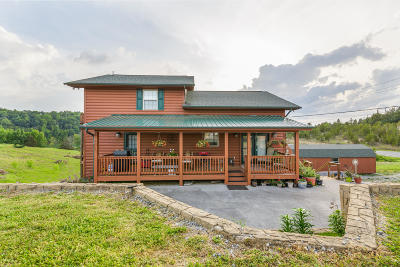 Dandridge, Sevierville Single Family Home For Sale: 1339 Parrotts Chapel Rd