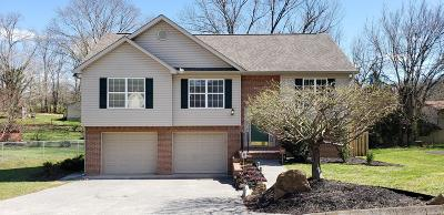 Knox County Single Family Home For Sale: 808 Lake Glen Lane