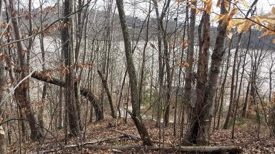 Sharps Chapel TN Residential Lots & Land For Sale: $125,000