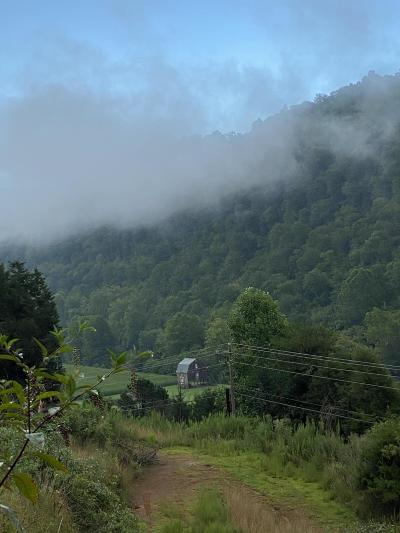 Residential Lots & Land For Sale: 00 Tazewell Highway 170 Acres