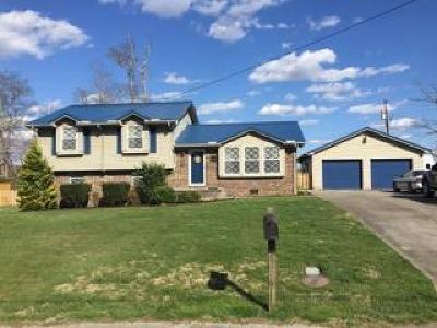 Harrogate Single Family Home For Sale: 272 Kincaid Rd