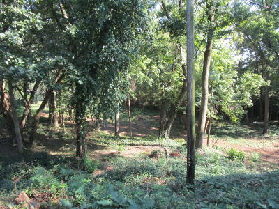 Knoxville Residential Lots & Land For Sale: Baker Ave