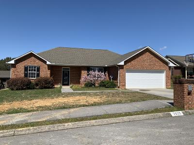 Knox County Single Family Home For Sale: 7629 Preston View Drive