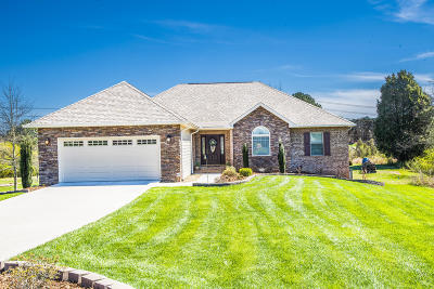 Loudon Single Family Home Pending - Continue To Show: 217 Tommotley Drive