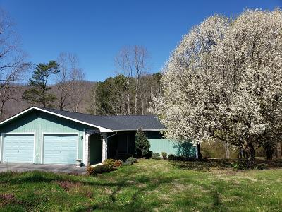 Lafollette Single Family Home For Sale: 1503 Back Valley Rd