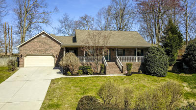 Blount County Single Family Home For Sale: 2245 Argonne Drive