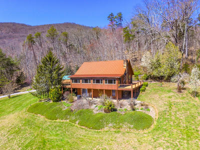 Campbell County Single Family Home For Sale: 174 Log Home Lane