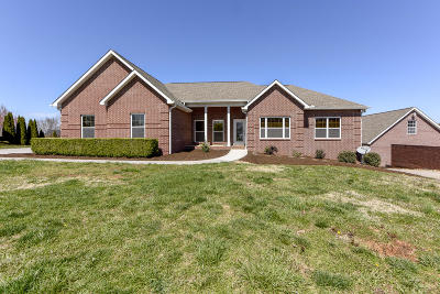 Blount County Single Family Home For Sale: 3820 Mary Frances Drive