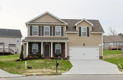 Knoxville Single Family Home For Sale: 2011 State Wood Court