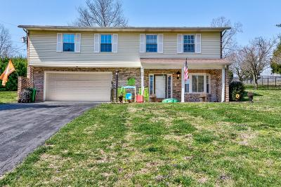 Campbell County Single Family Home For Sale: 126 Summitt Drive