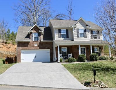 Knoxville Single Family Home For Sale: 1106 Gilbert Station Lane