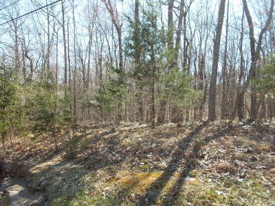 Fairfield Glade Residential Lots & Land For Sale: 124 Havenridge Circle
