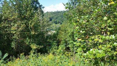 Anderson County, Campbell County, Claiborne County, Grainger County, Union County Residential Lots & Land For Sale: Suncrest Cove