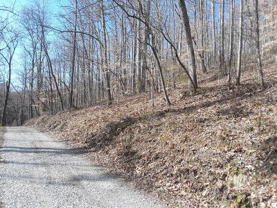 Claiborne County Residential Lots & Land For Sale: Robinson Rd