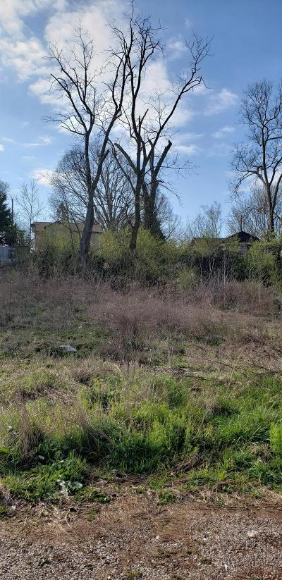 Knoxville Residential Lots & Land For Sale: 3856 Cluster St