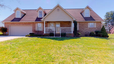 Strawberry Plains Single Family Home For Sale: 9412 Johnson Rd
