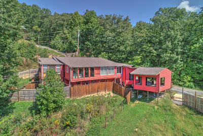 Cocke County Single Family Home For Sale: 275 Incline Way