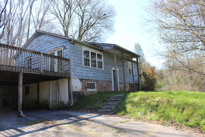 Knoxville Single Family Home For Sale: 205 Henderson Hollow Rd