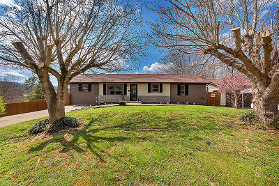 Maryville Single Family Home For Sale: 3211 Chilhowee Heights Rd