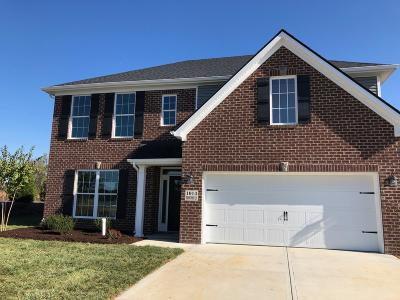 Maryville Single Family Home For Sale: 1014 Brookwood Lane