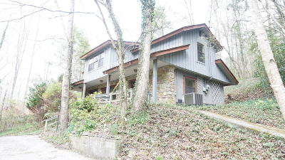 Sevierville Single Family Home For Sale: 2224 Cove Creek Drive