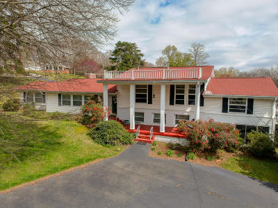 Knoxville Single Family Home For Sale: 244 Admiral Rd