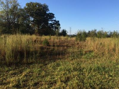 Loudon Residential Lots & Land For Sale: 1279 Buckhorn Way
