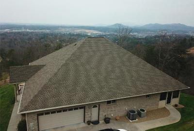 Sevier County Single Family Home For Sale: 3201 Engle Town Rd