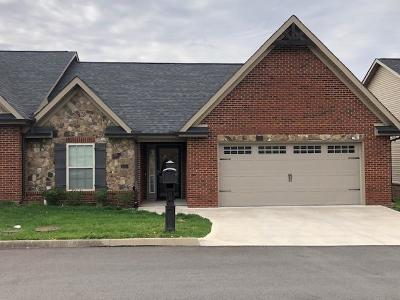 Claiborne County Single Family Home For Sale: 225 Stonefield Drive