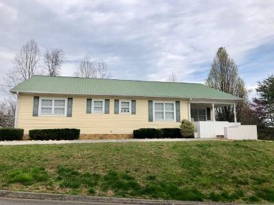 Sevierville Single Family Home For Sale: 3851 Katelyns Lane