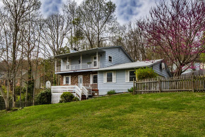 Knoxville Single Family Home For Sale: 10117 Lonesome Pine Drive