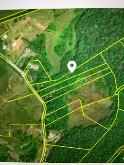 Sweetwater Residential Lots & Land Pending - Continue To Show: 2156 Hiwassee Rd